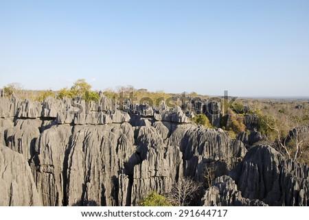 Tsingy de Bemaraha National Park. Unesco World Heritage in Madagascar. - stock photo