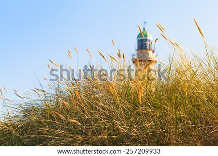 Tuft of beach grass in the sunshine and a lighthouse tower at the background above/Beach Grass and Lighthouse in the Sunlight - stock photo