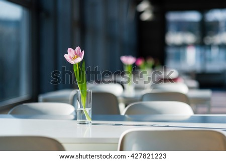 Tulip flower in the vase on the table in the public food court - stock photo