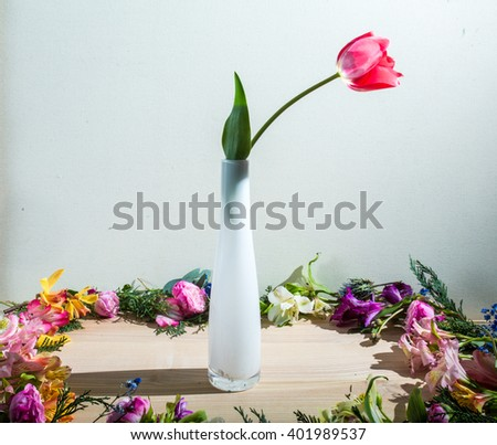 Tulip in a vase - stock photo