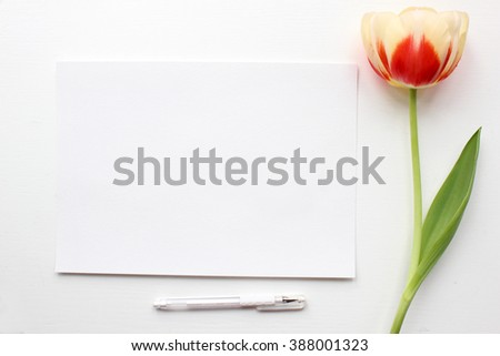 Tulip Mockup. Post blog social media. Top view with blank paper. Banner template layout mockup. Simple white background - stock photo