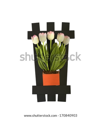 tulip on the wall - stock photo