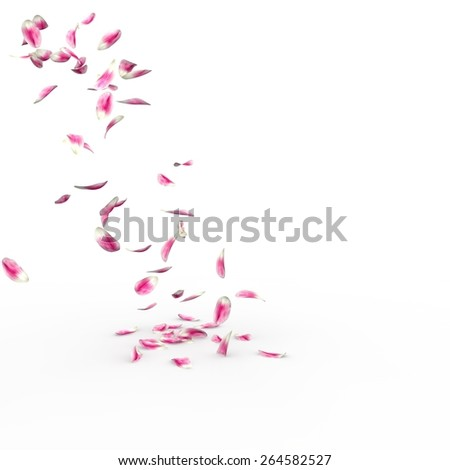 Tulip petals fall to the floor. Isolated background. 3D render - stock photo