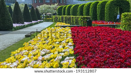 Tulip spectacle at the annual Keukenhof Gardens display near Amsterdam, the Netherlands - stock photo