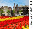 tulips and  facades  of old houses in Amsterdam, Netherlands - stock photo