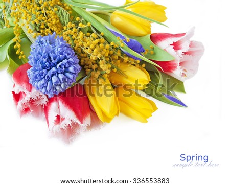 Tulips,iris and mimosa flowers bunch isolated in white background with sample text - stock photo