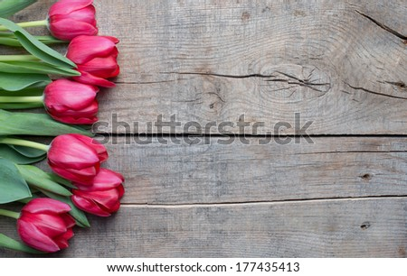 Tulips on an antique wooden background - stock photo