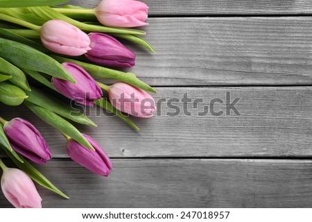 Tulips on wood background - stock photo