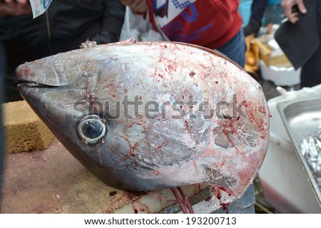Tuna fish head, Catania fishmarket, Sicily, Italy, Europe - stock photo