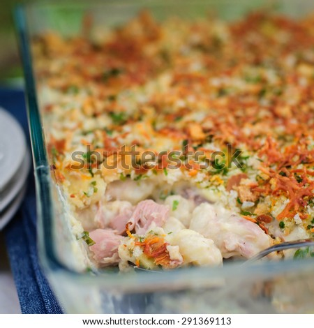 Tuna, Leek, Mornay and Orange Pasta Bake with Bread Crumb and Cheese Topping (Macaroni and Cheese), square - stock photo