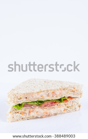 tuna salad sandwich with tomato, lettuce and mayonnaise - stock photo
