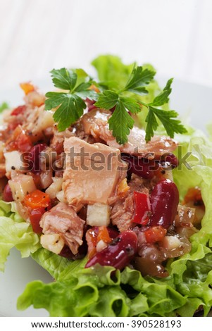 Tuna salad with lettuce, kidney beans and vegetables - stock photo