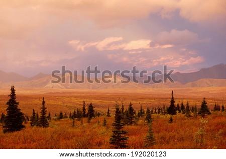 Tundra landscape in autumn color - stock photo