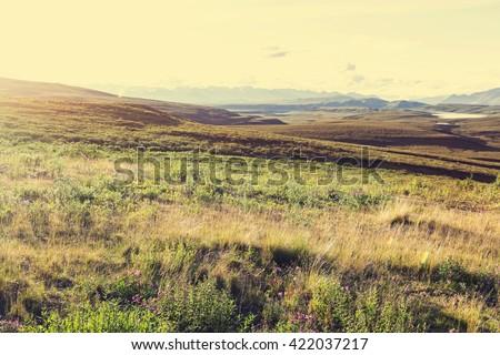 Tundra landscapes above Arctic circle - stock photo