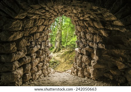 Tunnel entrance in the Forest - stock photo