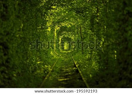 Tunnel of Love in Ukraine - stock photo