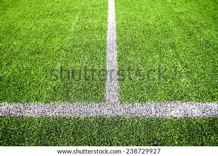 turf grass - stock photo
