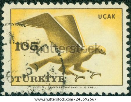 TURKEY - CIRCA 1959: a stamp printed in the Turkey shows Hawk, Bird of prey, circa 1959 - stock photo