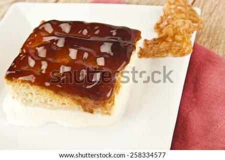 Turkish Traditional Trilece Caramel Dairy Dessert Cake - stock photo