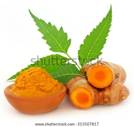 Turmeric with neem leaves over white background - stock photo