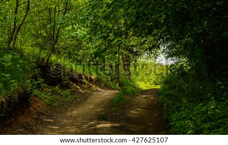 turn field road between the trees in the spring forest - stock photo