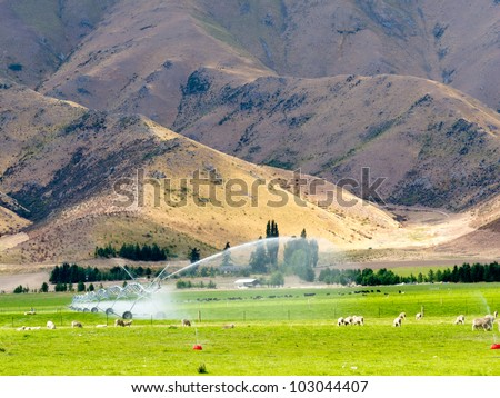 Turning a dry mountain valley into lush green farm pastures by irrigation with a long mobile sprinkler system while livestock graze peacefully nearby - stock photo