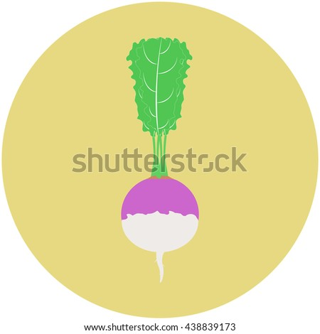 Turnip isolated on old yellow circle background  - stock photo