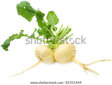 Turnip with leaves isolated on white - stock photo