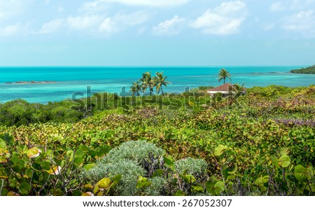 Turquoise caribbean sea. A view from Contoy island, Mexico. - stock photo