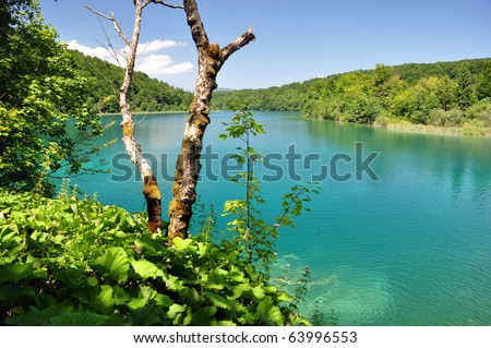 Turquoise lake in Plitvice national park, Croatia - stock photo