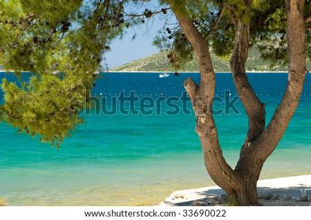 Turquoise sea under green tree - stock photo