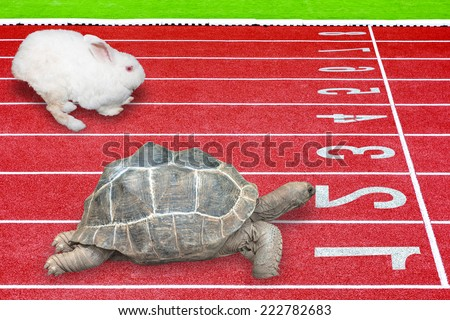 Turtle and rabbit effort running competition sport on red rubber track near finish line the result is winning turtle concept of business success - stock photo