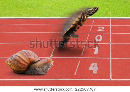 Turtle and Snail effort running competition sport on red rubber track near finish line with numbering year 2014. The result is wining Tortoise concept of business completed. - stock photo