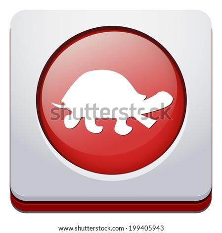 turtle button - stock photo
