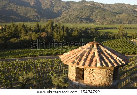 Tuscan Castle tower and vineyard in napa valley, California - stock photo