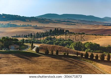 Tuscan classic summer landscape - stock photo