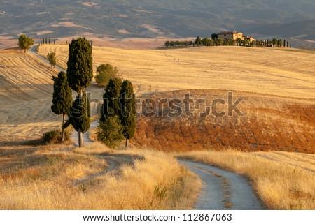 Tuscan countryside at sunset, near Pienza, Tuscany, Italy - stock photo