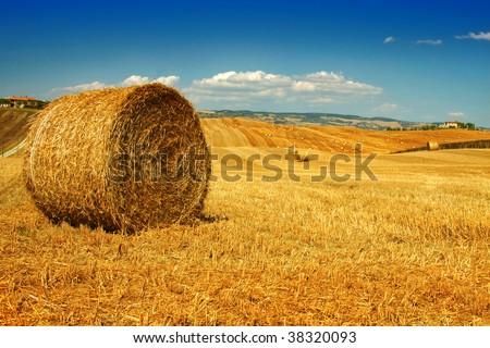 Tuscany - stock photo