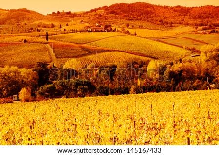 Tuscany countryside, Italy. - stock photo