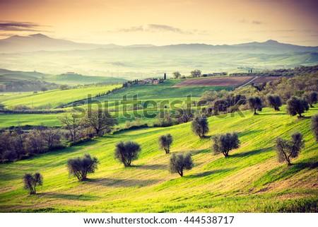 TUSCANY, ITALY - APRIL 12, 2016: Tuscan landscape at sunrise near San Quirico d Orcia, Tuscany, Italy - stock photo