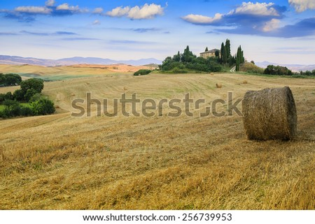 Tuscany, Italy - San Quirico d'Orcia - stock photo