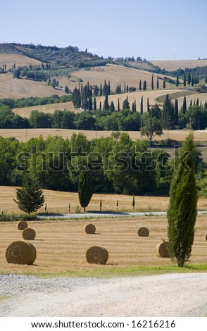 Tuscany landscape - stock photo