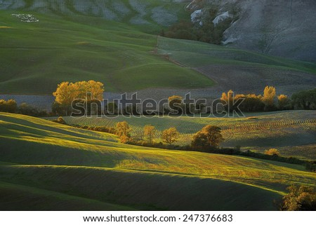 Tuscany - Landscape panorama, hills and meadow, Toscana - Italy - stock photo