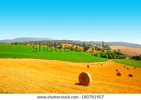 Tuscany Landscape with Many Hay Bales  - stock photo