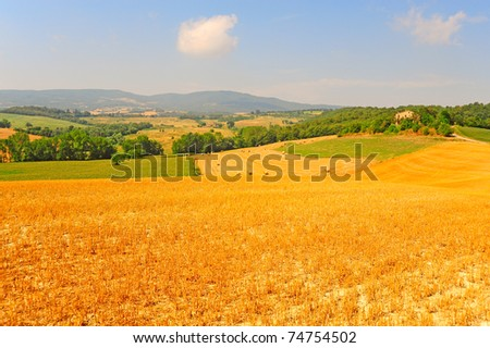 Tuscany Landscape With Many Hay Bales In The Morning - stock photo