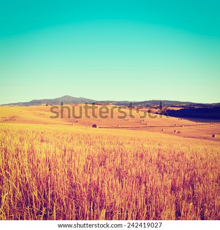 Tuscany Landscape with Many Hay Bales in the Morning, Instagram Effect - stock photo