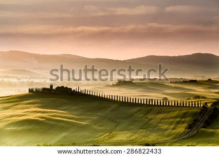 Tuscany road with cypress trees at sunst morning, Val d'Orcia, Italy - stock photo