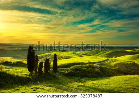 Tuscany, rural sunset landscape. Cypress trees, green field, sun light and cloud. Volterra, Italy, Europe. - stock photo