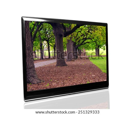 tv monitor over white surface with park - stock photo