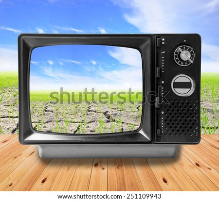 TV vintage and Agriculture paddy field, Eco concept. - stock photo